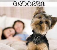 Hoteles que admiten perros en Andorra